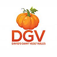 David's Giant Vegetables