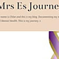 Mrs Es Journey