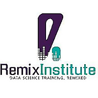 Remix Institute