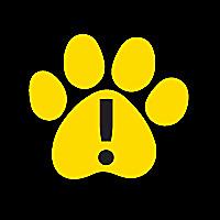 Pet Dangers