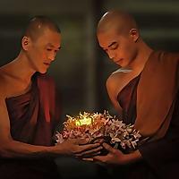Motivational Monk