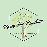 Paws for Reaction