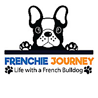 Frenchie Journey