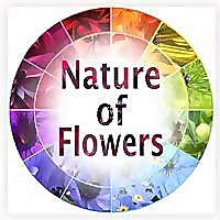 Nature of Flowers