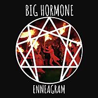 Big Hormone Enneagram