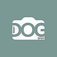 That Dog Spot