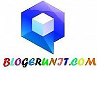 Blogerunit