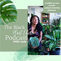 Black Plant Chick Pod
