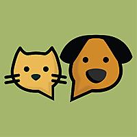 PetForums » Cat Chat