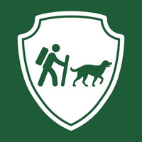 Camping With Dogs Blog