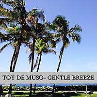 Toy De Muso