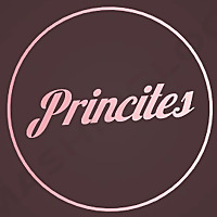 Princites.com | Robotics and Advanced Technologies