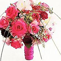 LeLe Floral