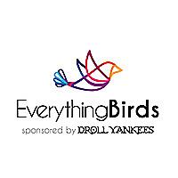 Everything Birds