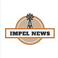 Impel News