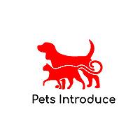 Pets Introduce