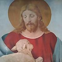 Jesusshowsus