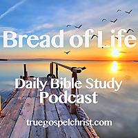 Bible Study BOL