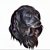 Weiner Doggy