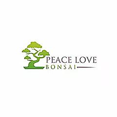 Peace Love Bonsai