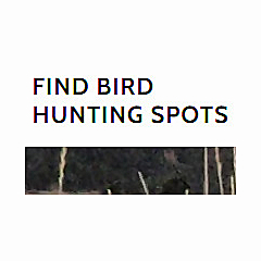 Find Bird Hunting Spots