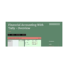 Financial Accounting With Tally - Overview