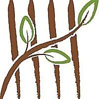 Tally Services Blog