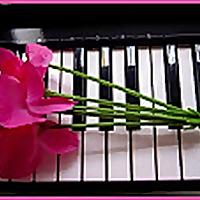 Pianolicious