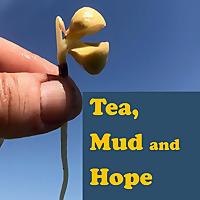 Tea, Mud and Hope