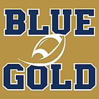 Blue & Gold Illustrated