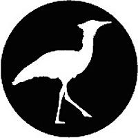 African Travel Bird