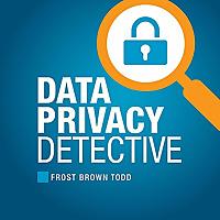 Data Privacy Detective