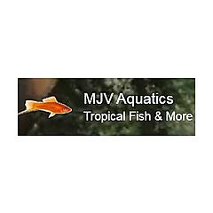 MJV Aquatics