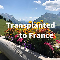 Transplanted to France