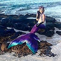 Bsmart Biz Online 5214883 Top 15 Mermaiding Blogs & Websites To Follow in 2020 Blog