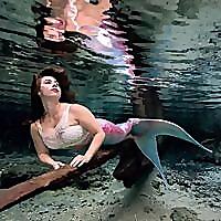 Bsmart Biz Online 5214920 Top 15 Mermaiding Blogs & Websites To Follow in 2020 Blog