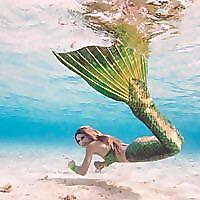Bsmart Biz Online 5214936 Top 15 Mermaiding Blogs & Websites To Follow in 2020 Blog