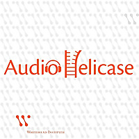 AudioHelicase