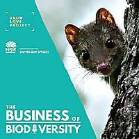 Business of Biodiversity