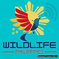 Wildlife Philippines