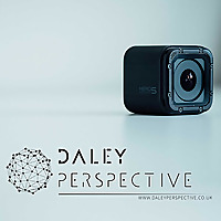 Daley Perspective