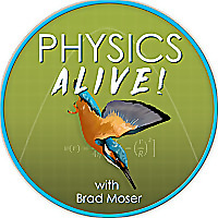 Physics Alive
