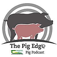 The Pig Edge