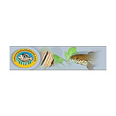 Indian Aquarium Hobbyist