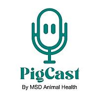 PigCast