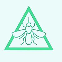 Pest Termites Control