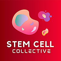 Stem Cell Collective