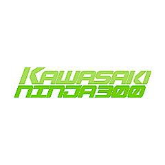 Kawasaki Ninja 300 Forums