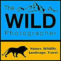 The Wild Photographer