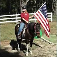 The Backyard Horse Blog